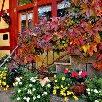 Осень  в Лауфе  на  Пегнитце , золотой  октябрь ! :: backareva.irina Бакарева
