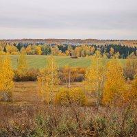 Подмосковная осень. :: Ирина Нафаня
