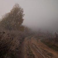 Там, за туманом... :: Владимир Макаров