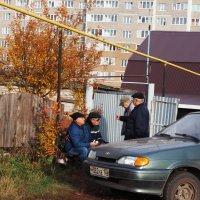 Соседи. :: Ильсияр Шакирова