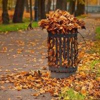 Осенний букет :: Георгий Вересов