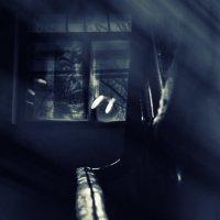 О том как бывает страшно в тёмных парадных. :: Ирэна Мазакина