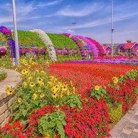 Парк цветов, :: Александр Голубов