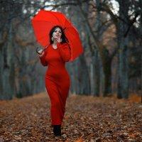 Леди в красном. :: Анжелика Маркиза