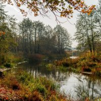 Осень... :: Ярослав Sm