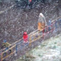Снегопад. :: Ильсияр Шакирова