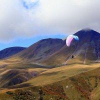 Полет парапланериста над Кавказским хребтом :: Елена Даньшина