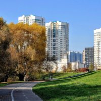 На окраине Братеево... :: Анатолий Колосов