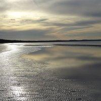 Балтийский берег :: Sabina