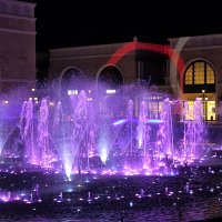 Фиолетовые брызги :: Nina Karyuk