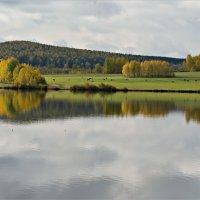 Осенний берег :: Leonid Rutov