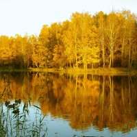 Осеннее отражение. :: Лия ☼