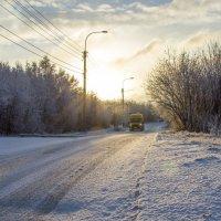 Первый день зимы :: Светлана marokkanka