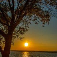 Когда закат прощальными лучами спокойных вод озолотит стекло... :: Виктор Малород