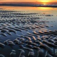 отлив моря на закате :: Георгий А