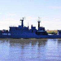 СФП-95 :: Александр Владимирович Никитенко