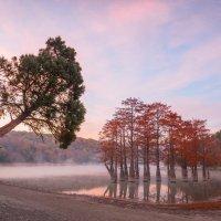 Рассвет на озере Сукко :: Алексей Яковлев