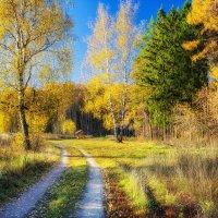 Осенние зарисовки :: Igor Yakovlev