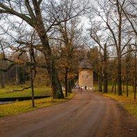 Поздняя осень. :: Олег Бабурин