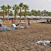 В турецком раю :: Nina Karyuk