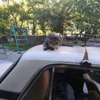 Крым, Партенит :: ElenaS S