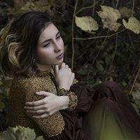 под виноградной лозой осенью :: Алина Жак Жакшаускайте