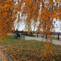 Осень на набережной :: Вячеслав Маслов