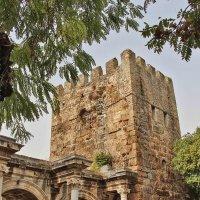 Смотровая башня времён Римской империи :: Nina Karyuk