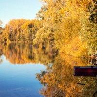 Золотая осень. :: Надежда