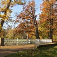 Осень в Царском Селе :: Елена