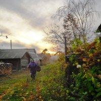 В деревне :: Mary Коллар
