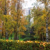 Прогулка по осеннему городу (51) :: Виталий