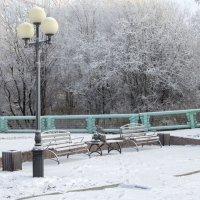 Зимний парк :: Светлана marokkanka