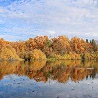 Осень в усадьбе Никольское-Обольяново. :: Ирина Нафаня