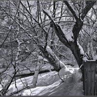 Ностальгия по бело черному...) :: Юрий Ефимов