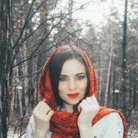 в лесу :: Евгений Князев