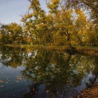 В парке осень... :: Павел Петрович Тодоров