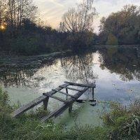 Осень, пруд,вечер... :: Svetlana Sneg