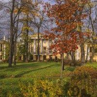 Сад дворца Бобринских :: bajguz igor