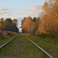 Путь в прошлое... :: Юрий Карелин