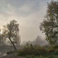 Хмурое утро :: Sergey Polovnikov