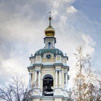 Черно-желтая стража небесных ворот... :: Екатерина Рябинина
