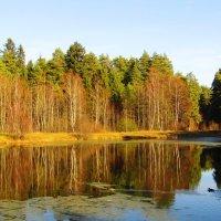 Осенний ясный день :: Андрей Снегерёв