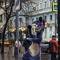 В Москву пришли ослы ... :: Va-Dim ...