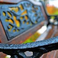 Толи дождь, толи снег... :: Дмитрий Иванцов