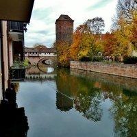 Осень  в Нюрнберге  ,золотой ноябрь :: backareva.irina Бакарева