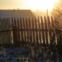 Солнце и забор. :: Павел