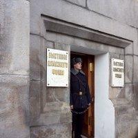 На страже фонда ... :: Лариса Корж