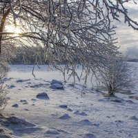 Просто зима пришла :: Светлана marokkanka