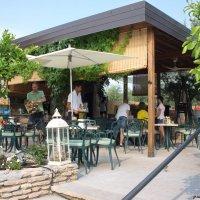 Кафешка вблизи дикого пляжа :: Лира Цафф